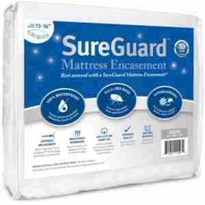 9 Best Bed Bug Mattress Cover Reviews 2