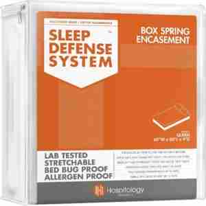 9 Best Bed Bug Mattress Cover Reviews 3