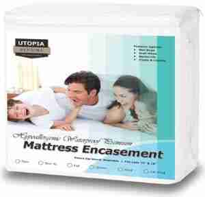 9 Best Bed Bug Mattress Cover Reviews 8