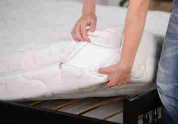 Best Bed Bug Mattress Cover Reviews