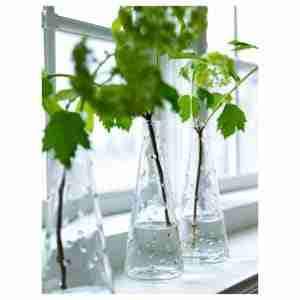Best Clear Glass Vases Reviews