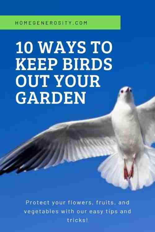 best way to stop birds from entering garden