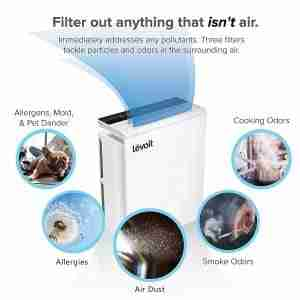 cheap air purifier for bedroom