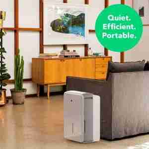 dehumidifier to help reduce humidity