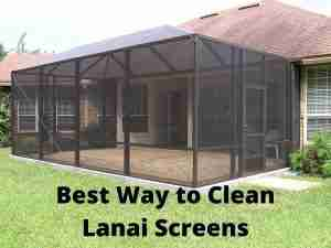3 Best Ways To Clean Lanai Screens | Our Favorite Tips