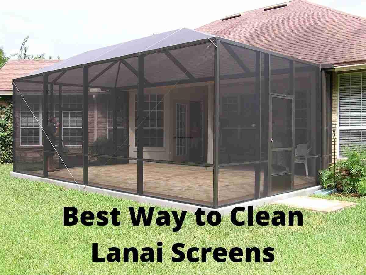 best way to clean lanai screens blog