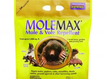 molemax review article